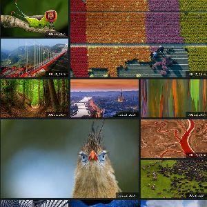 Bingの壁紙がダウンロードできるBing Homepage Gallery